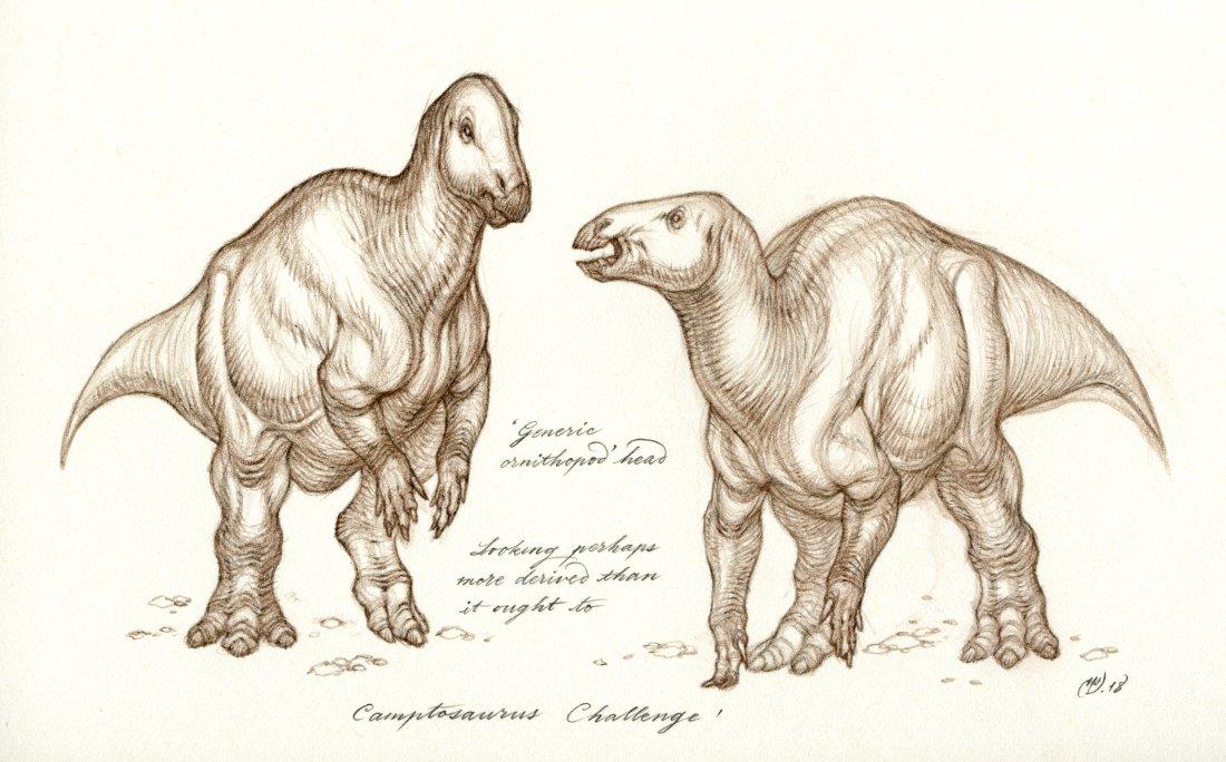 Natee Himmapaan's Camptosaurus Challenge