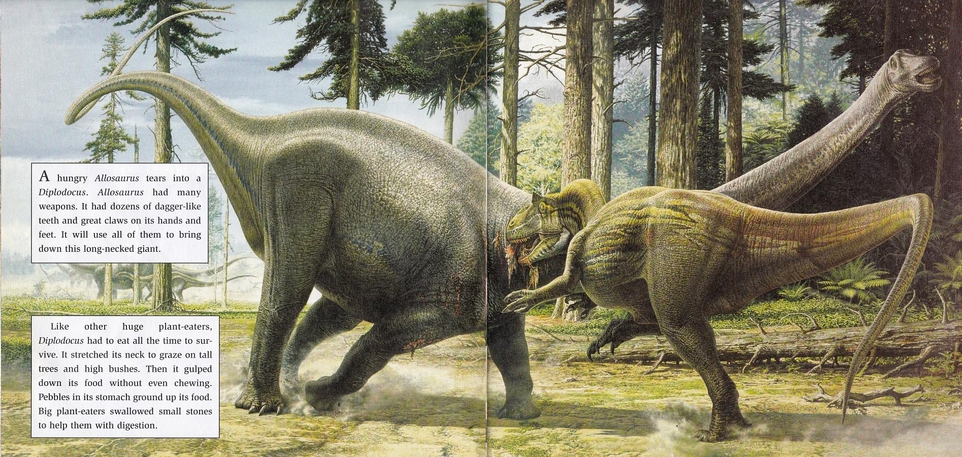 Allosaurus v Diplodocus