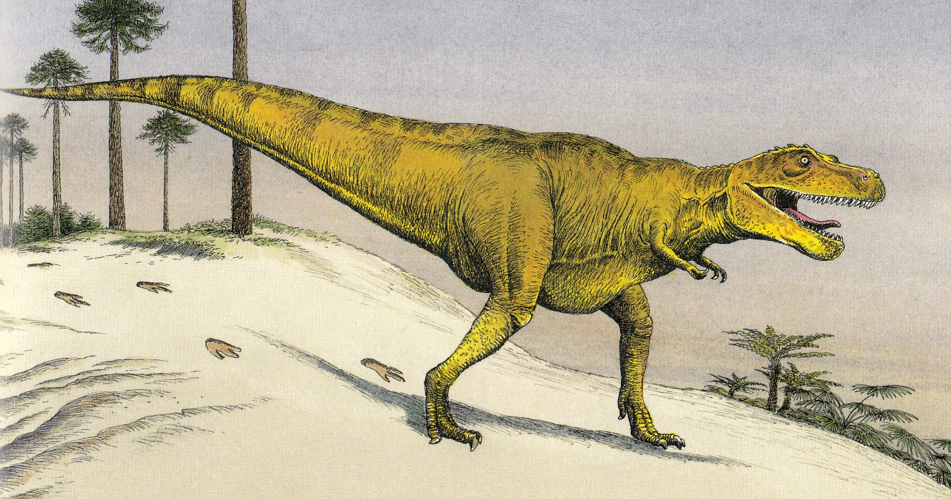Tyrannosaur with tail aloft