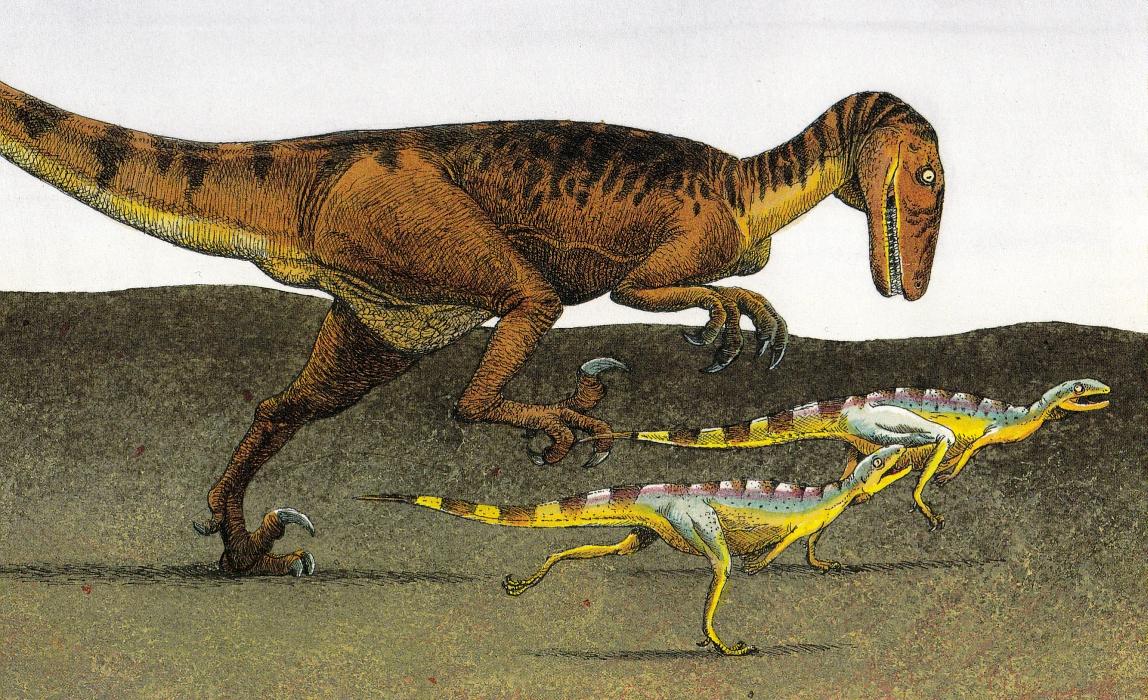 Running dromaeosaur