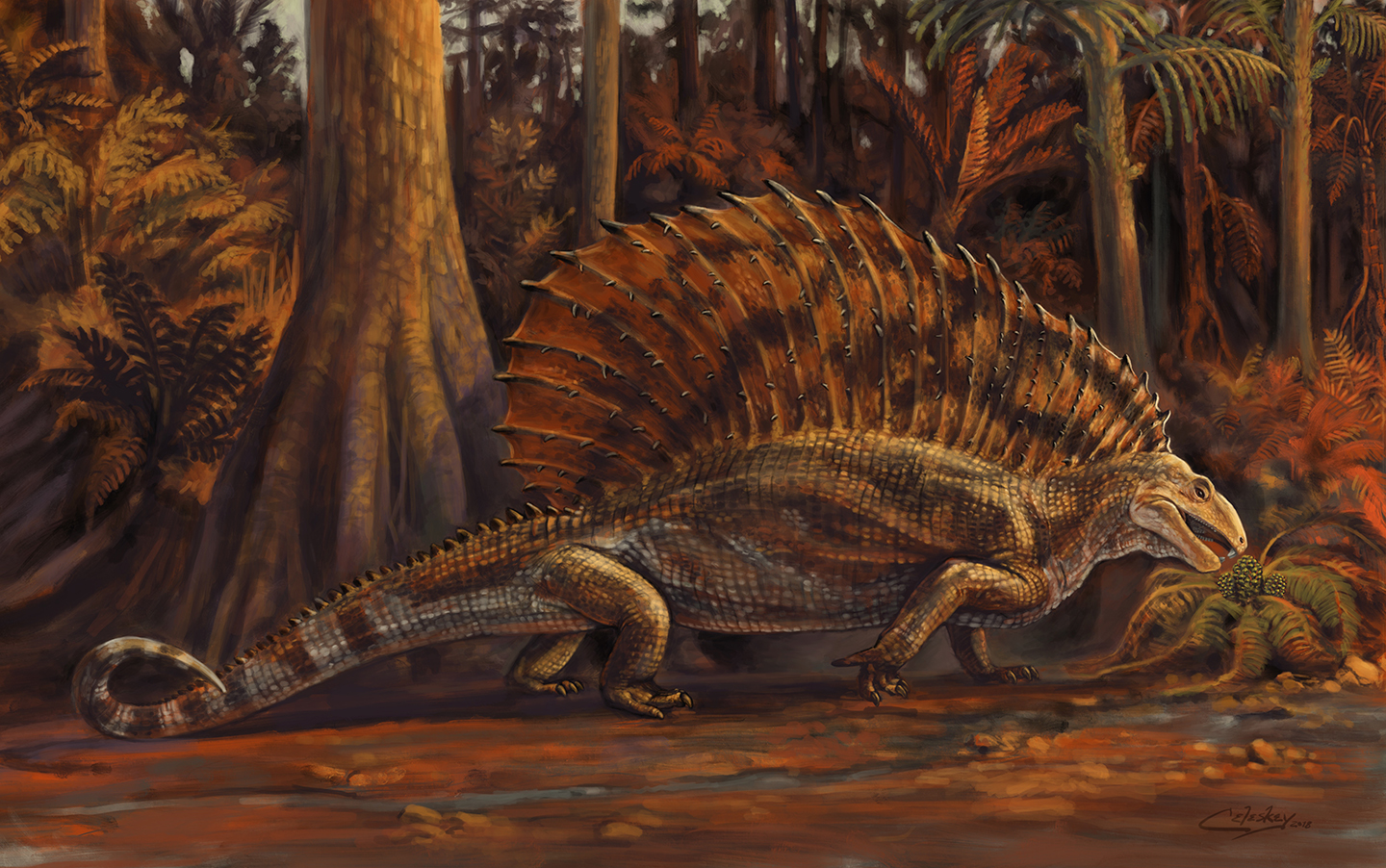Illustration of the edaphosaurid Gordodon, illustrated by Matt Celeskey. Shared here with the artist's permission.