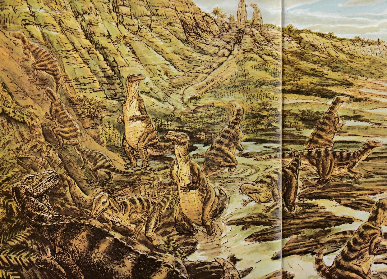 Iguanodon by Richard Bell