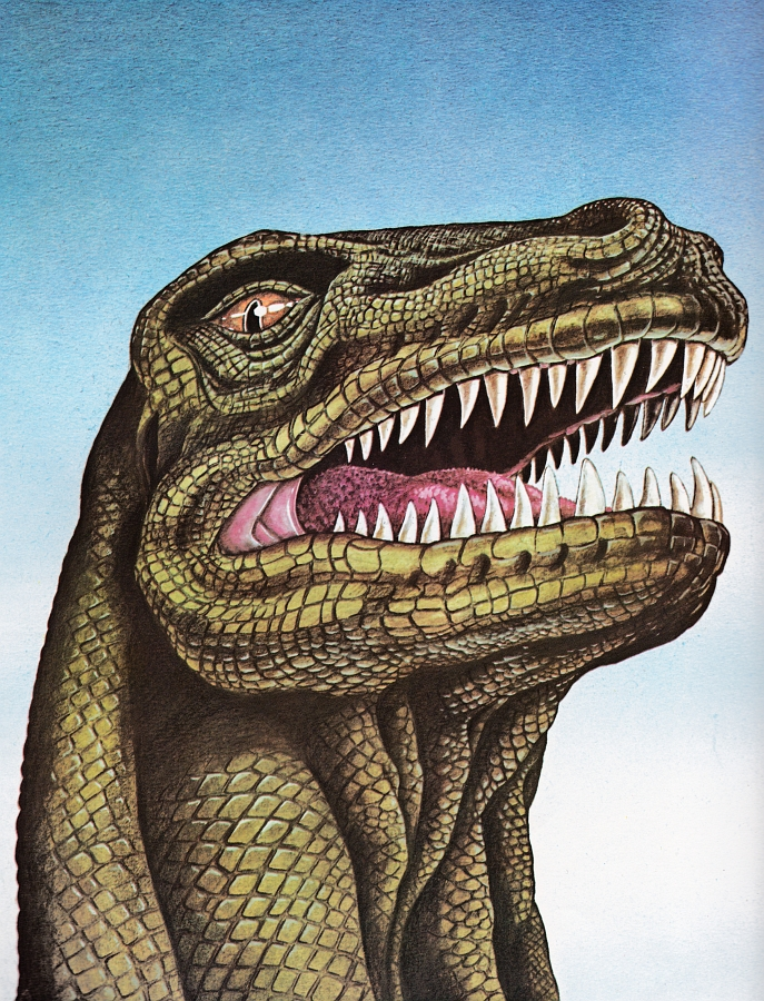 Tyrannosaurus by Linda Broad