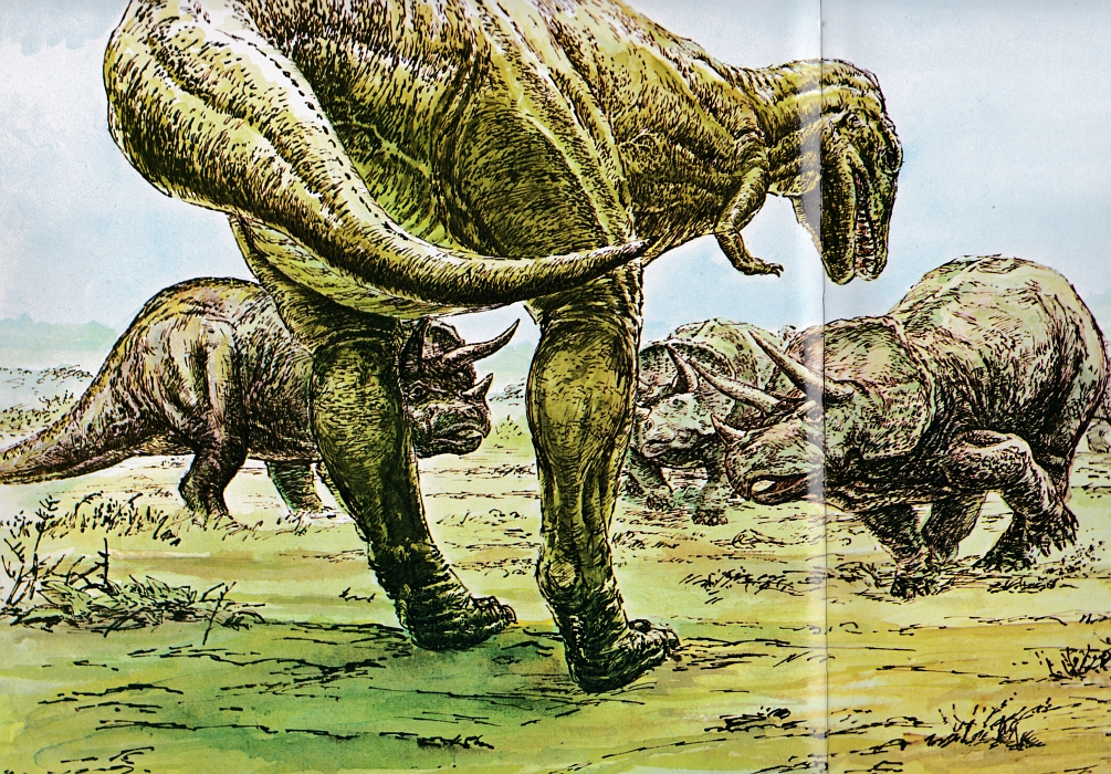 Tyrannosaurus and Triceratops by Richard Bell