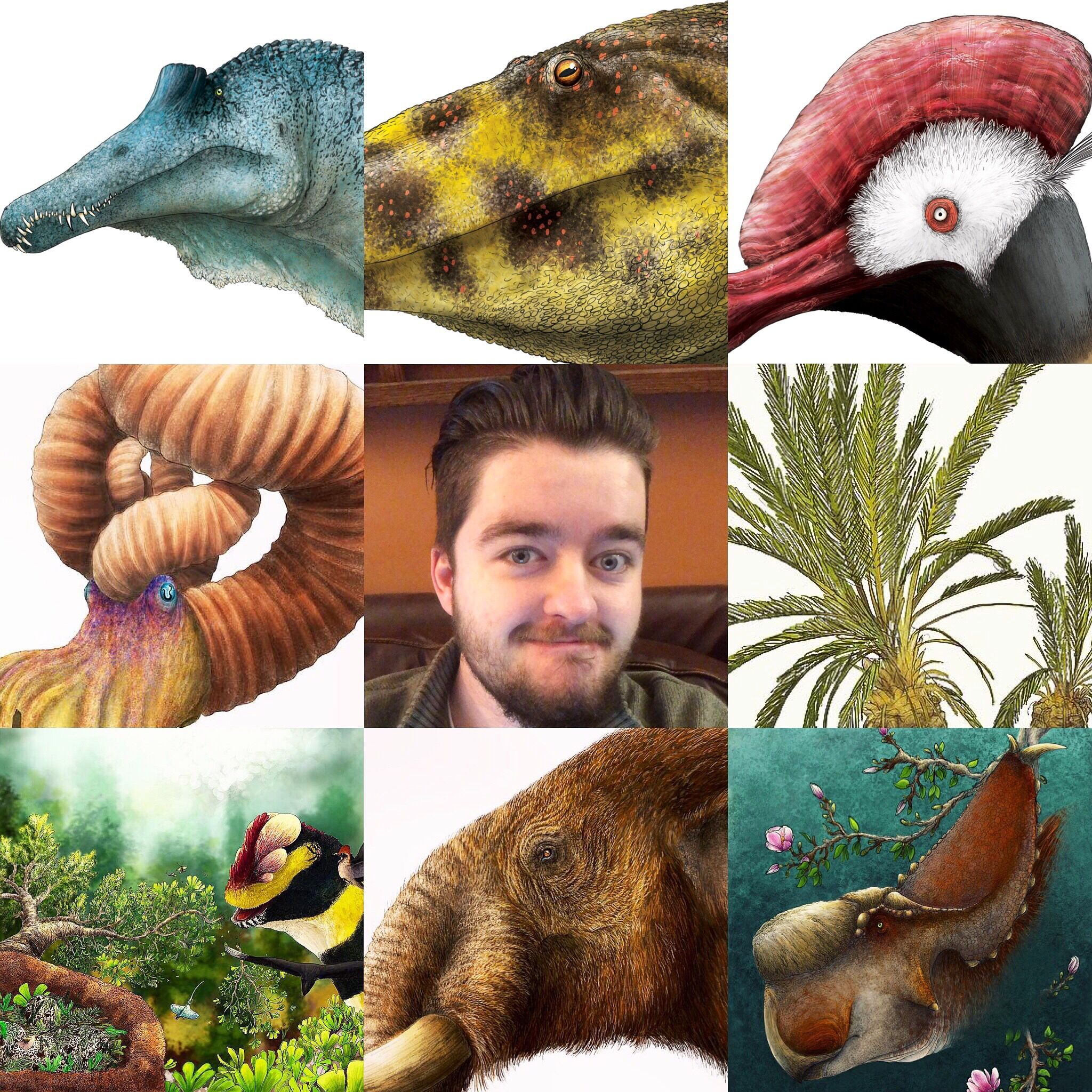 Three by three grid featuring paleoartist Liam Elward and some of his paleoart