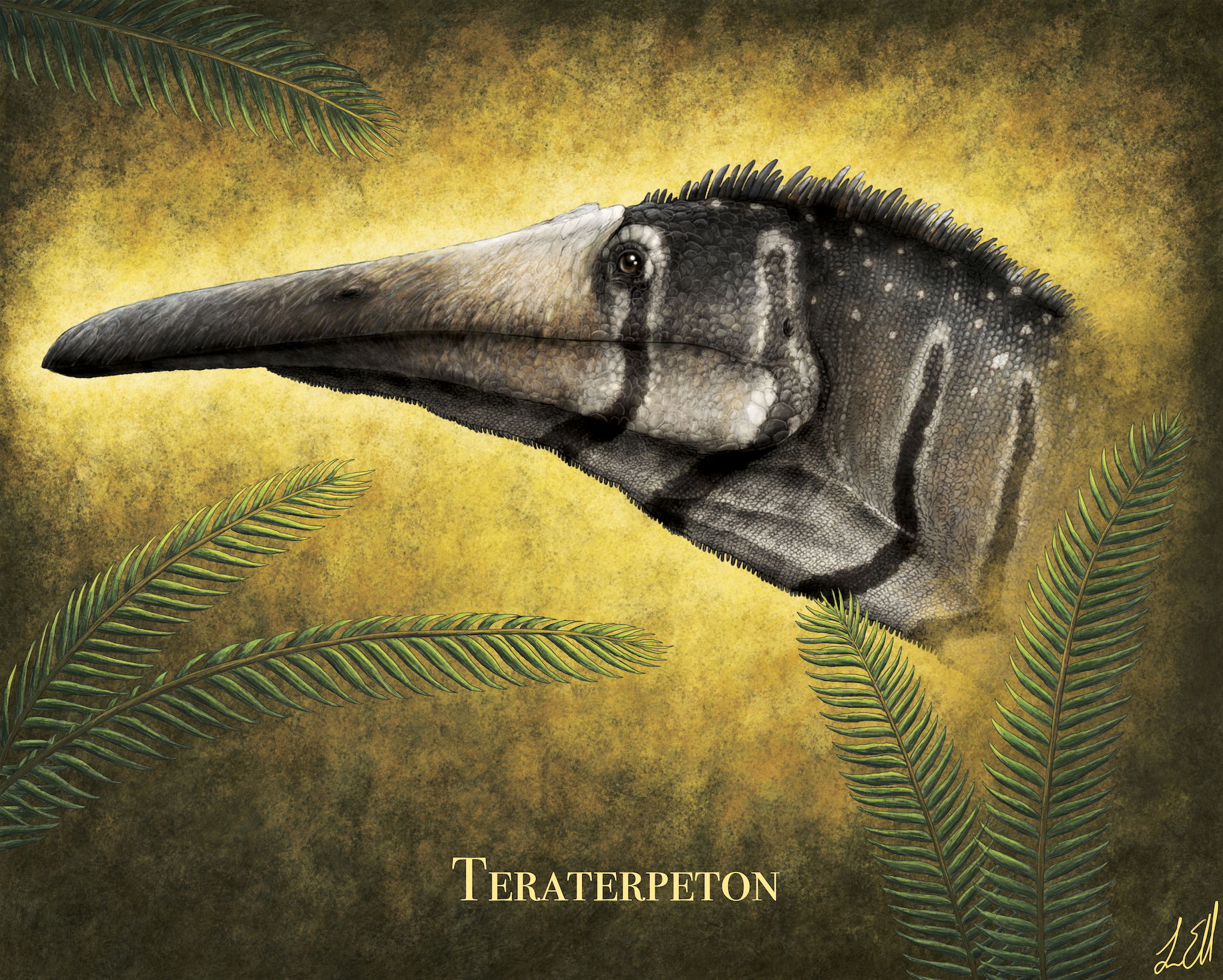 Profile rendering of the late Triassic archosauromorph Teraterpeton