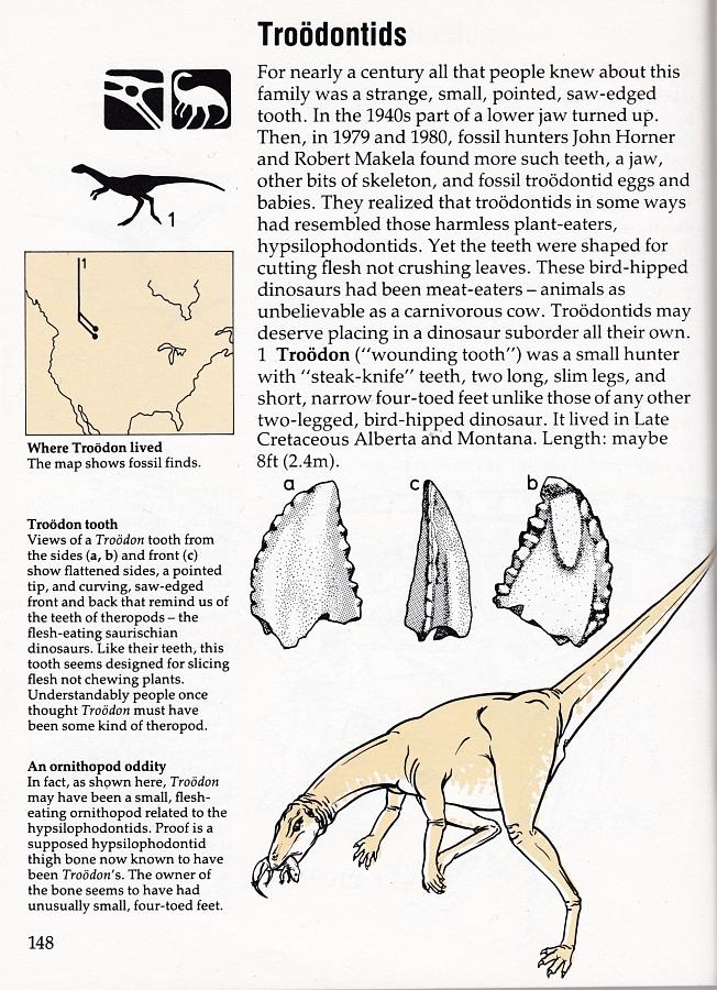 Field Guide Troodontids