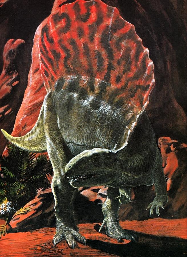 Spinosaurus by Steve Kirk