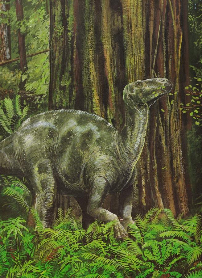 Iguanodon by Steve Kirk