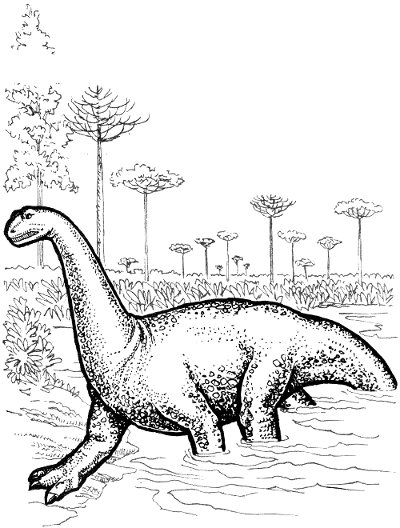 Sauropod line drawing
