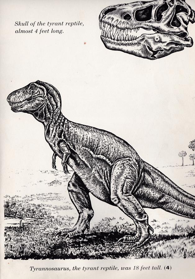 Tyrannosaurus - Prehistoric Zoo