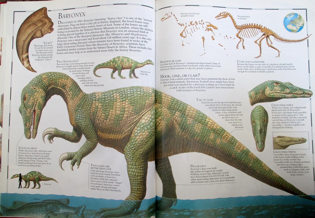 Baryonyx - Great Dinosaur Atlas