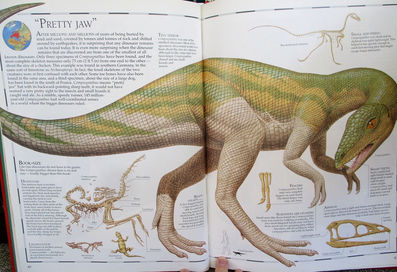 Compsognathus - Great Dinosaur Atlas