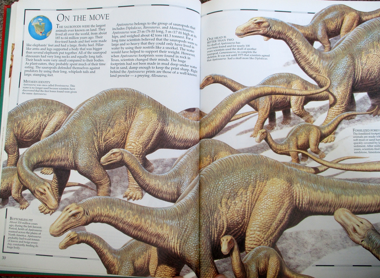 Apatosaurus on the move - Great Dinosaur Atlas