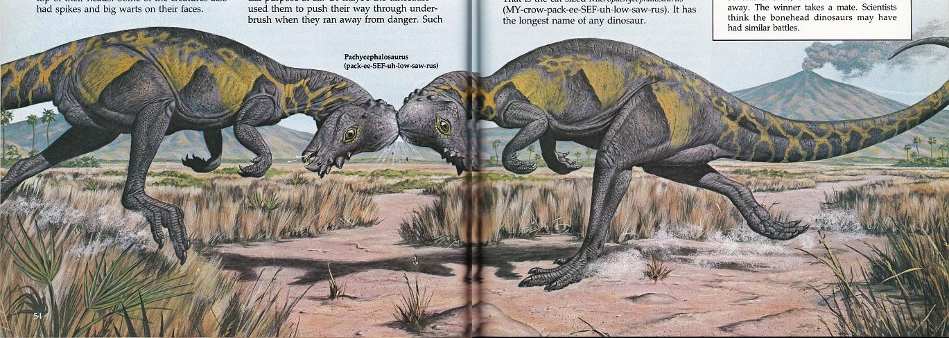 Pachycephalosaurus by Mark Hallett