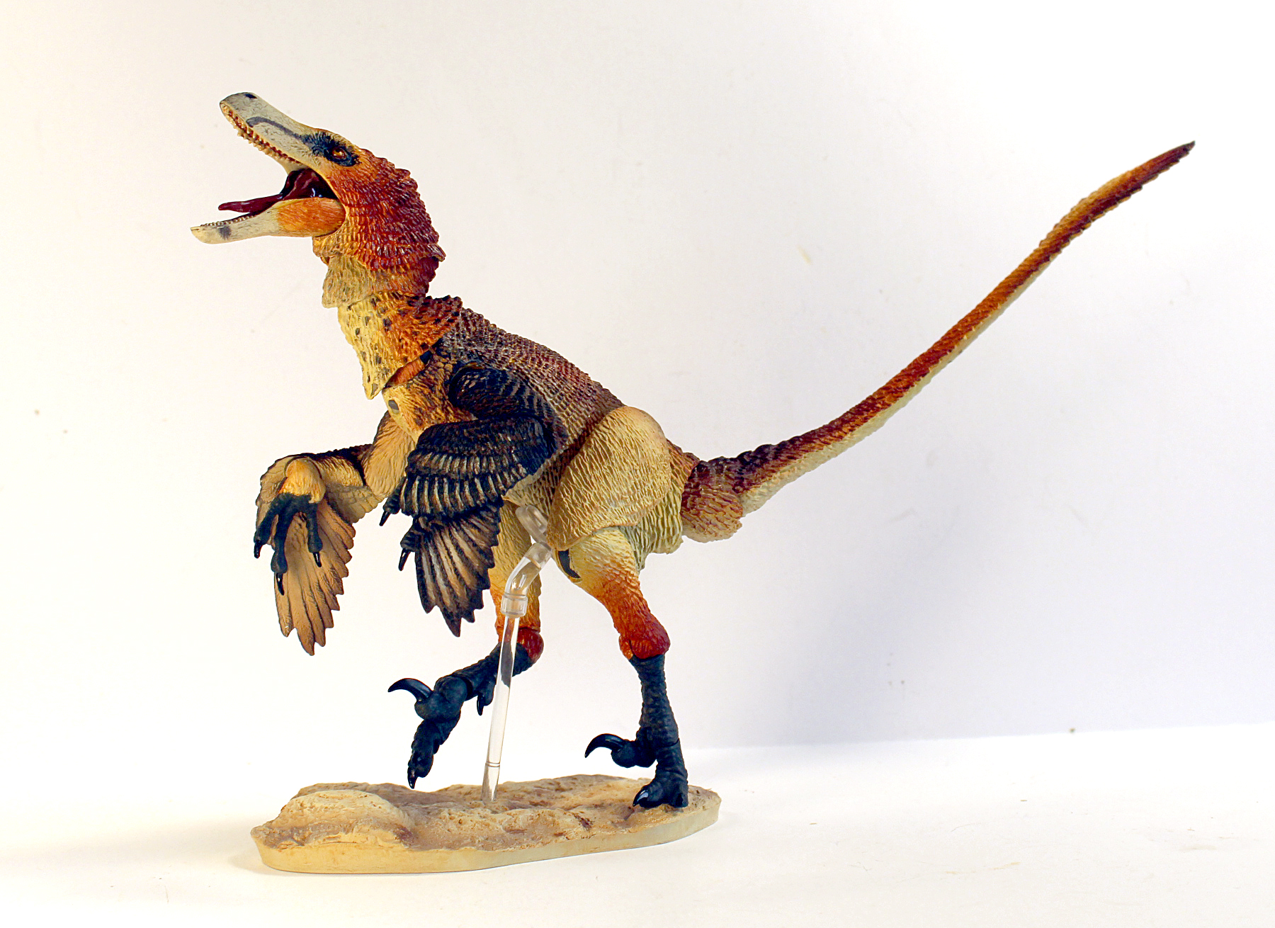 Photo of an articulated figure of Velociraptor mongoliensis, designed by David Silva.