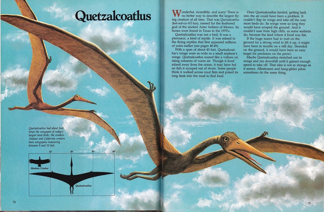 Quetzalcoatlus by Biruta Akerbergs