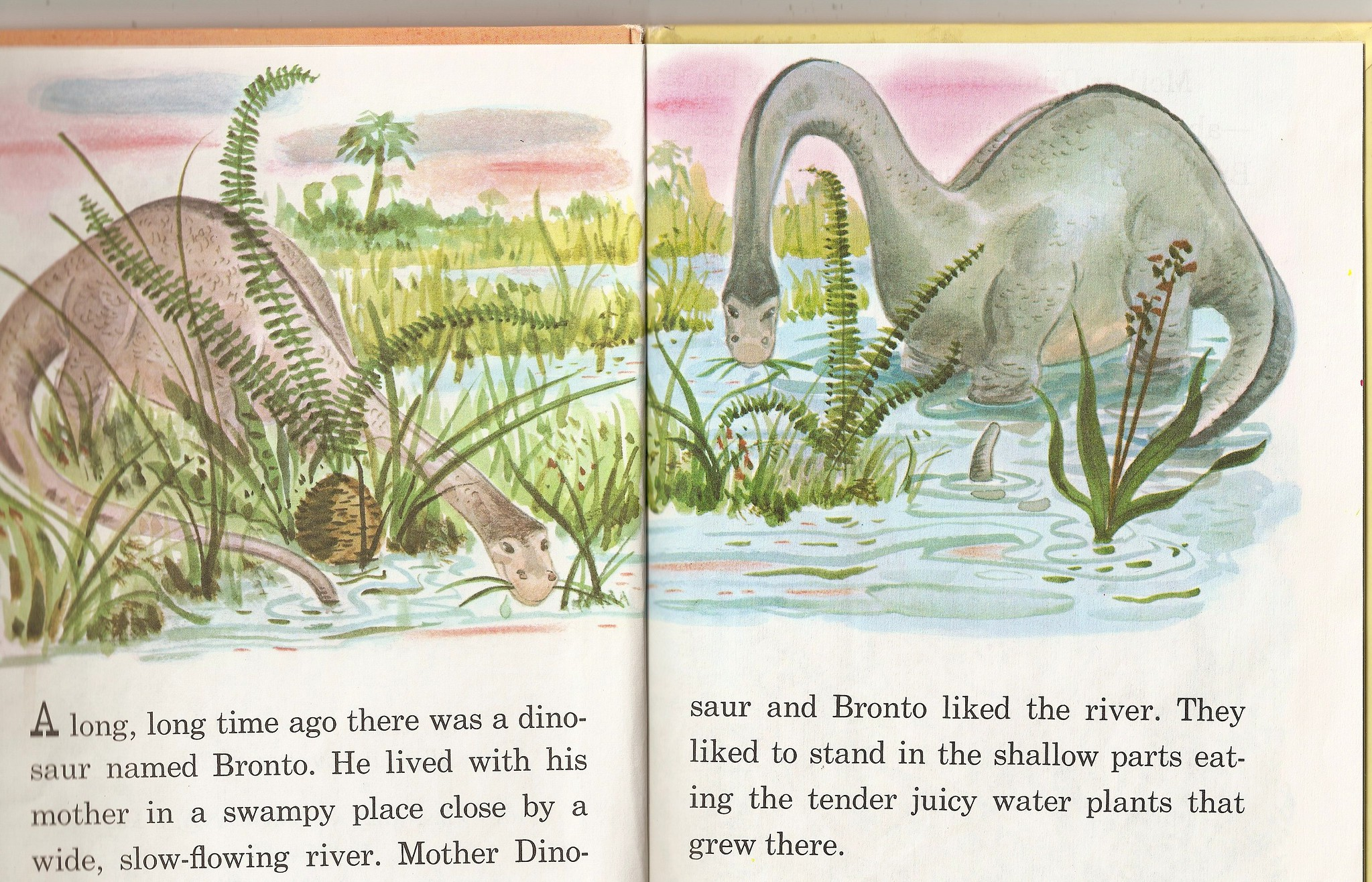 Bronto the Dinosaur interior illustration