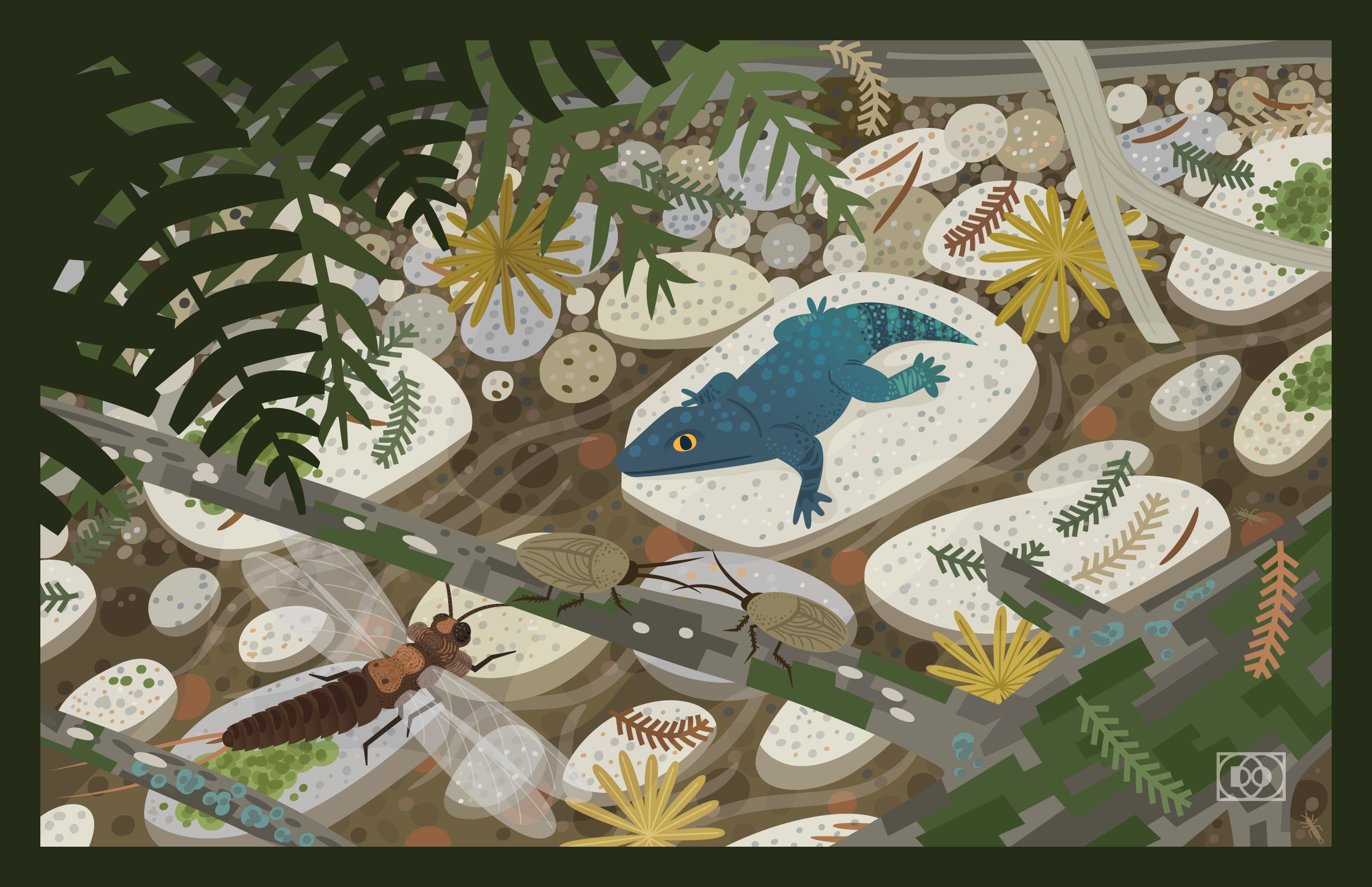 A vector paleoart scene of a creek bed in the Permian Bromacker ecosystem of Germany, featuring a paleodictyoperid insect, roachoids, and the dissorophoid temnospondyl Tambachia