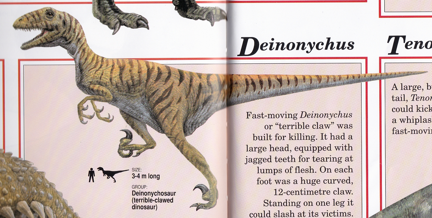 Deinonychus by Steve Kirk