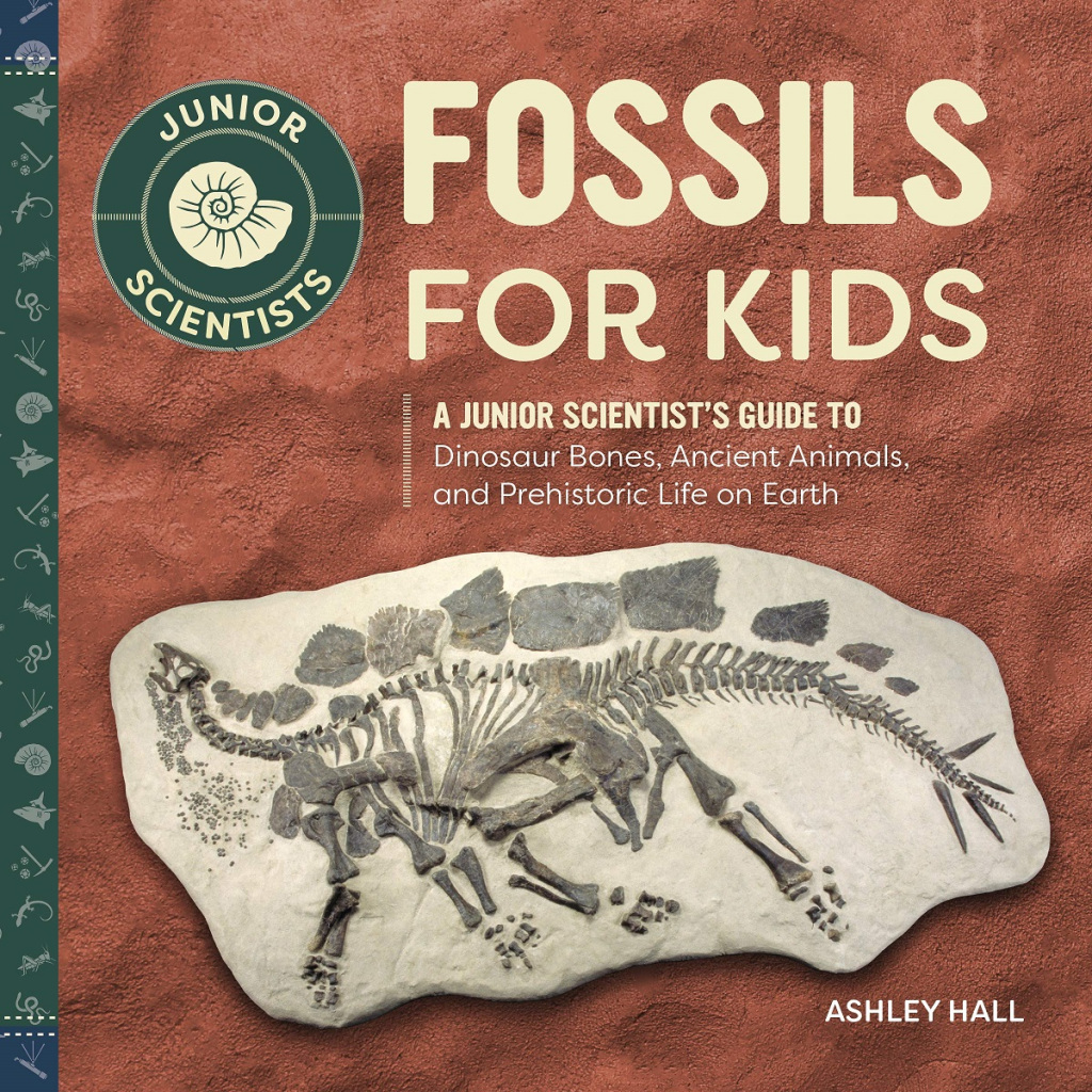 Book cover for Fossils for Kids by Ashley Hall