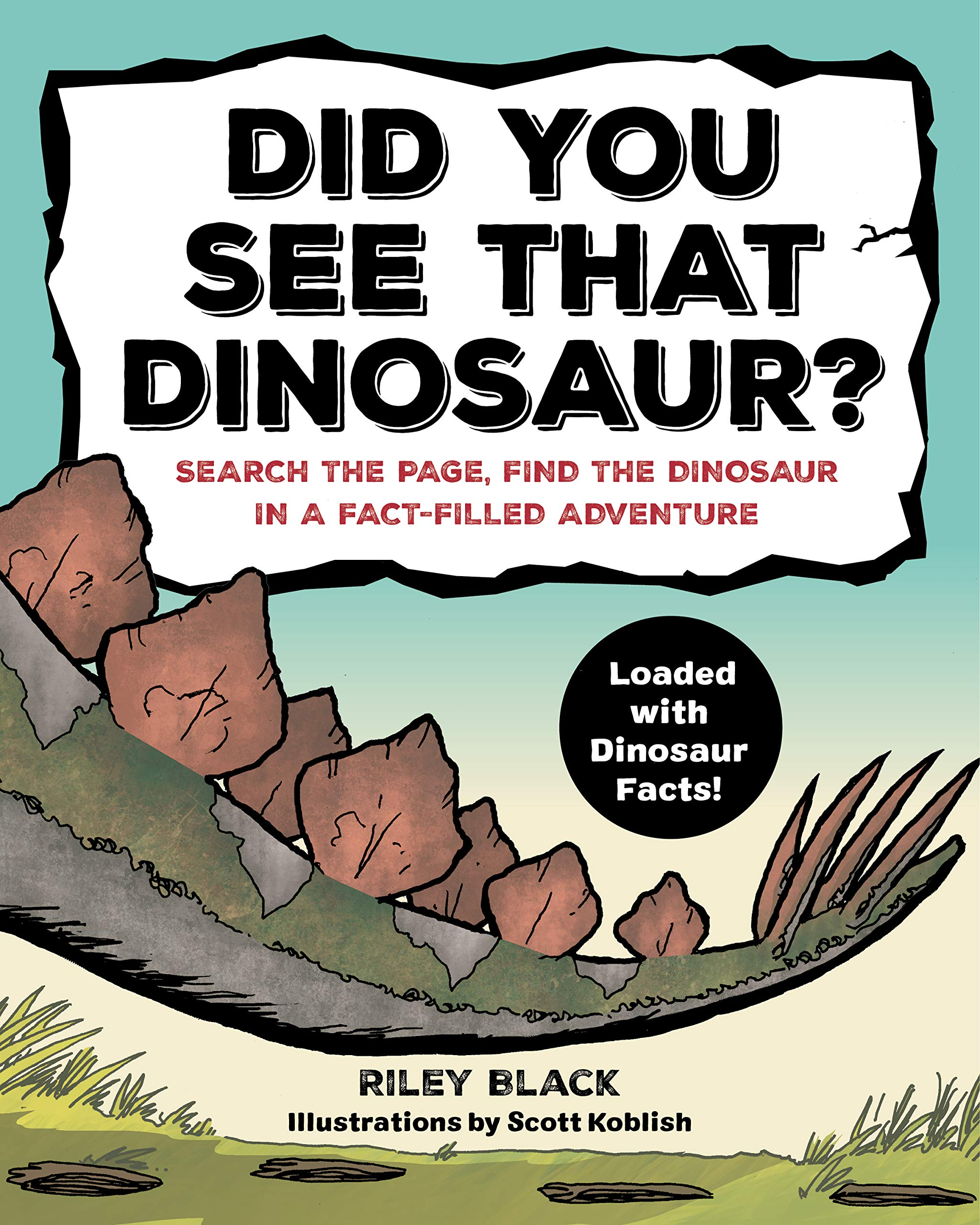 Book cover for Did You See That Dinosaur by Riley Black