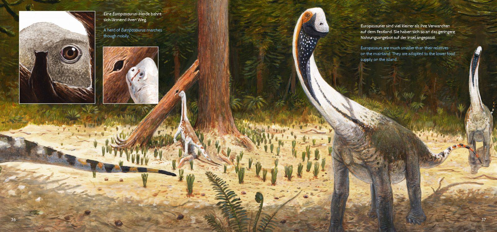Scene from Europasaurus