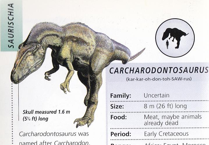 Carcharodontosaurus by Steve Kirk