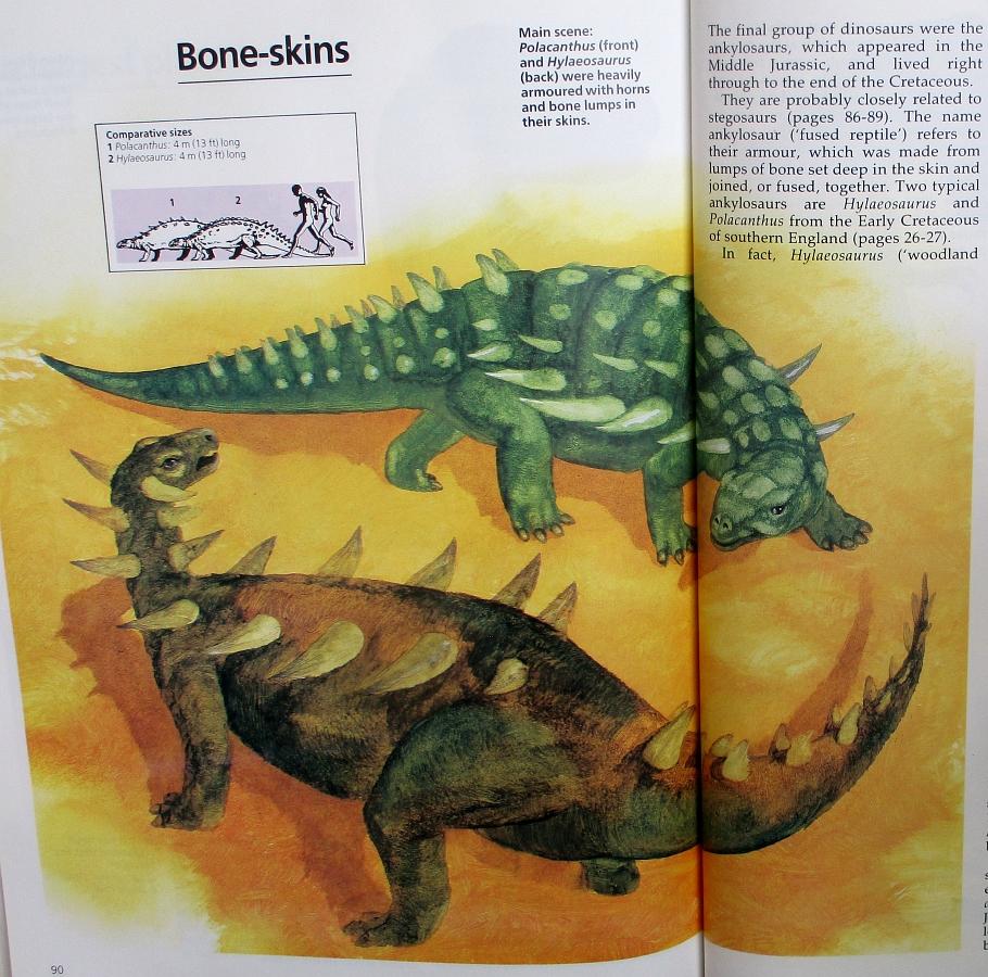 Bone-skins