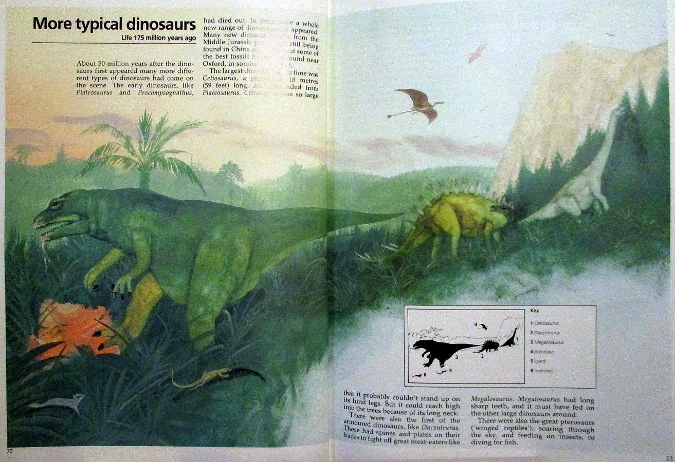 More typical dinosaurs