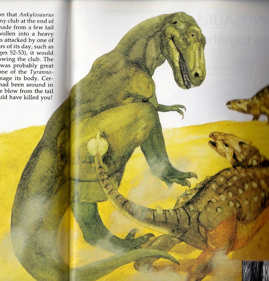 Tyrannosaurus v Ankylosaurus