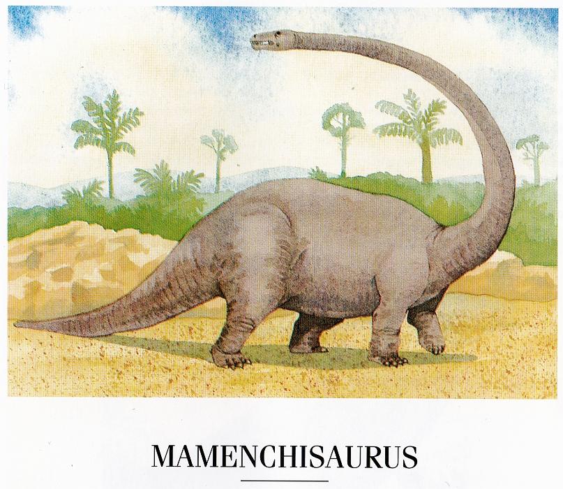 Mamenchisaurus by Elizabeth Sawyer