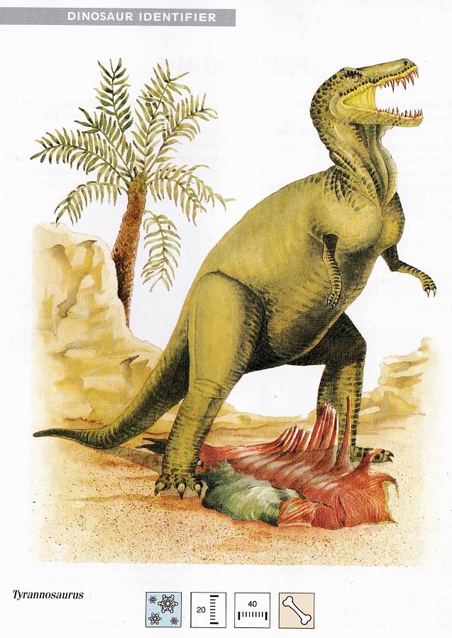 Tyrannosaurus by Elizabeth Sawyer