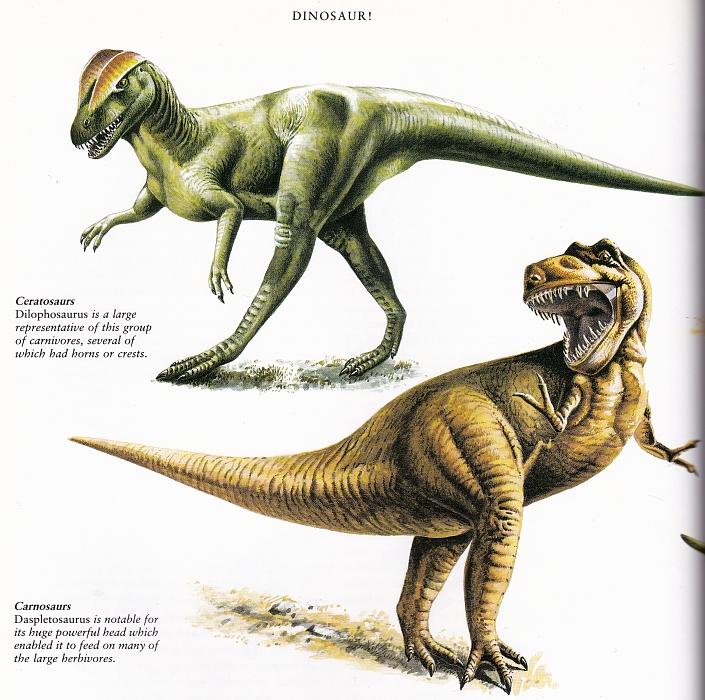 Dilophosaurus and Daspletosaurus by Andrew Robinson
