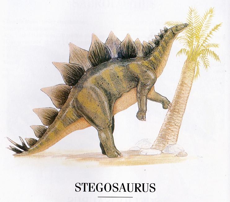 Stegosaurus by Graham Rosewarne