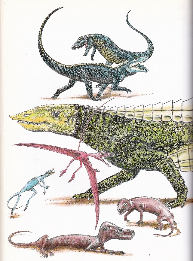 Triassic animals by Arril Johnson