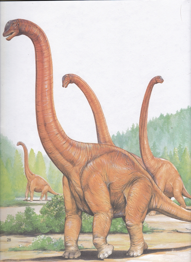 Brachiosaurus by Christopher Santoro