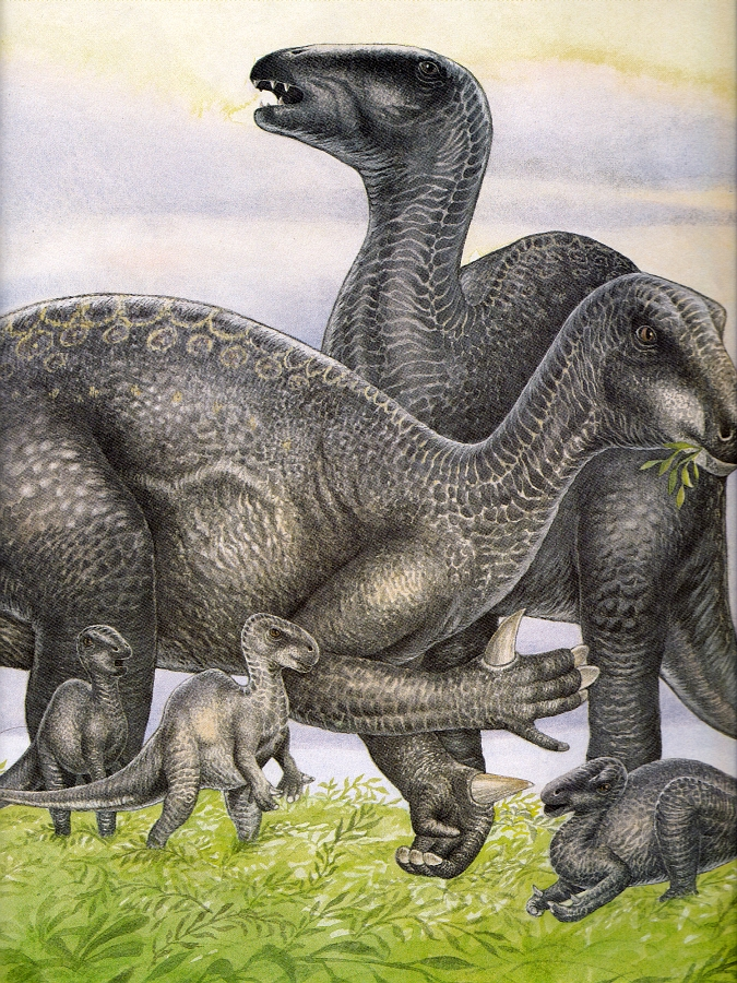 Iguanodon by Christopher Santoro