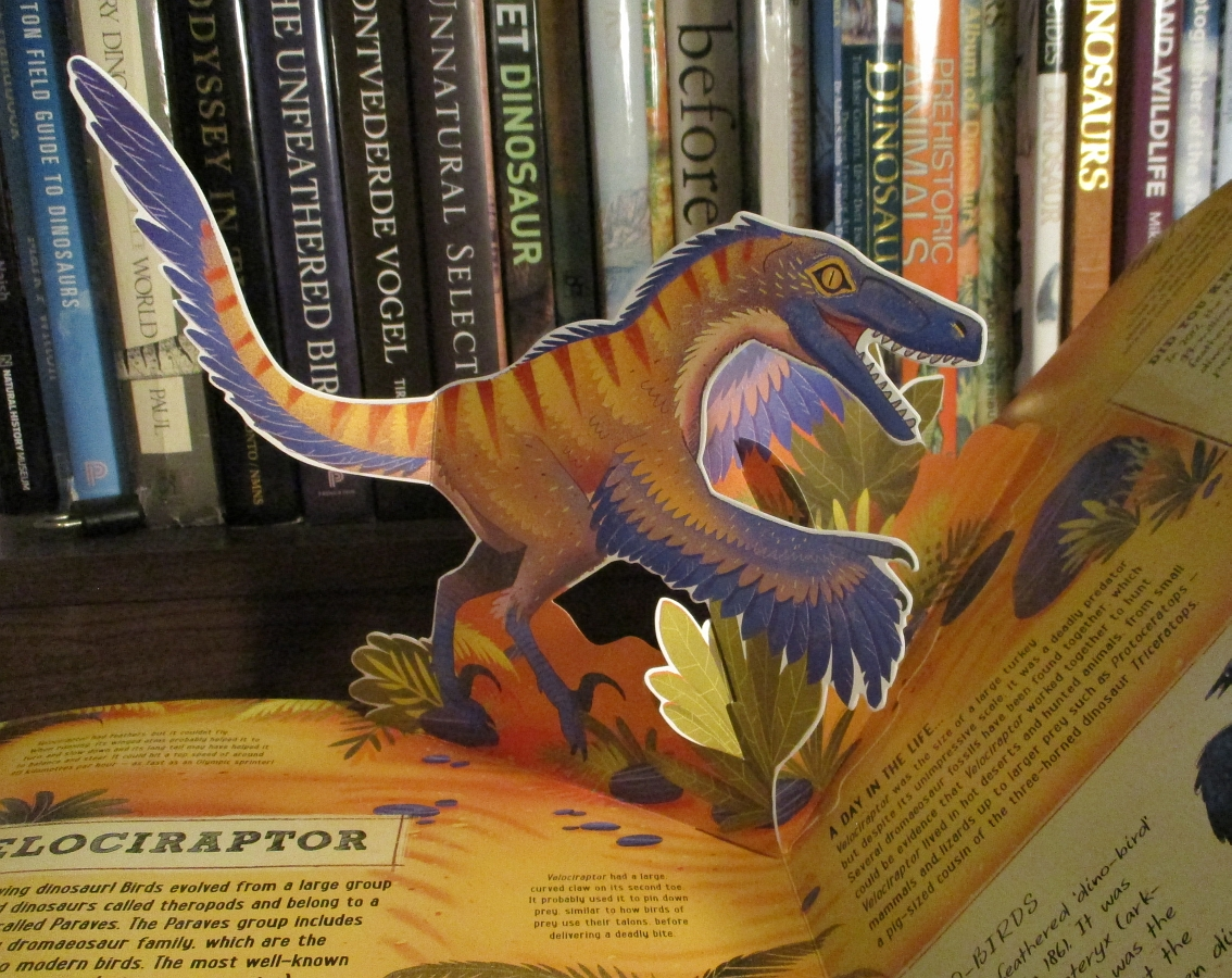 Velociraptor by Mike Love