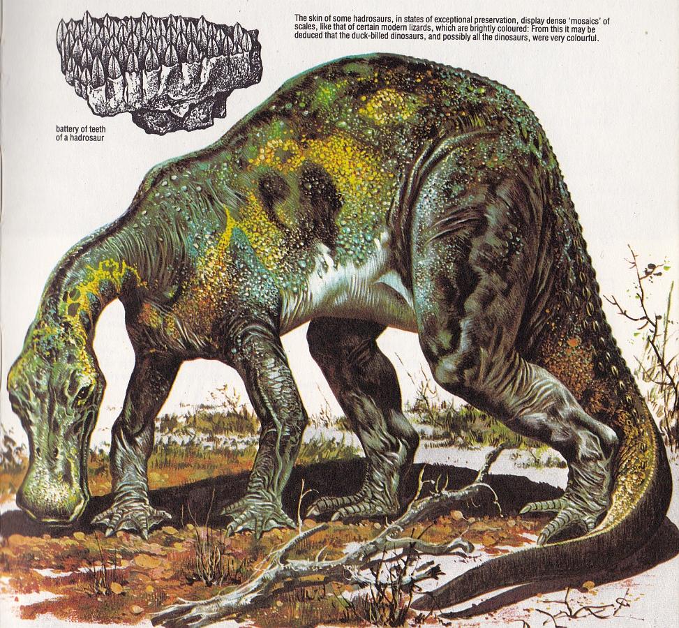 Anatosaurus by P Cozzaglio