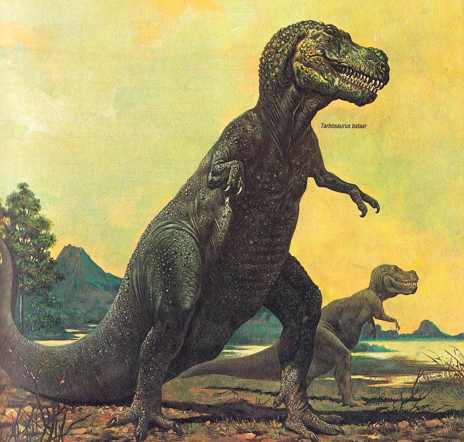 Tarbosaurus by P Cozzaglio